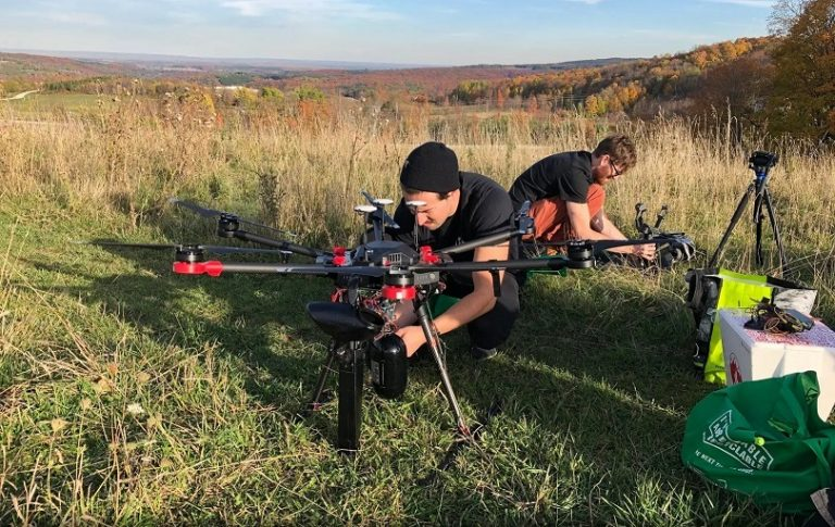 Con drones - así es el novedoso proceso de reforestación de bosques nativos en Canadá